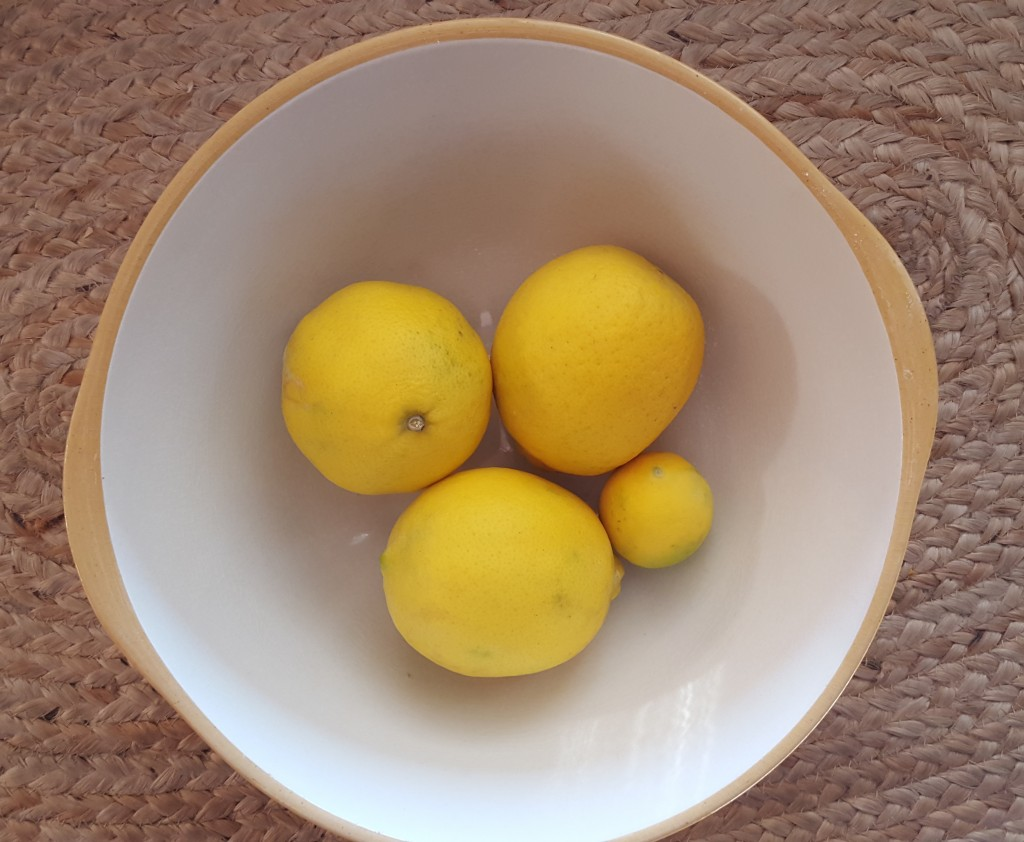 Houston Meyer lemons and little ole' Okie ones.