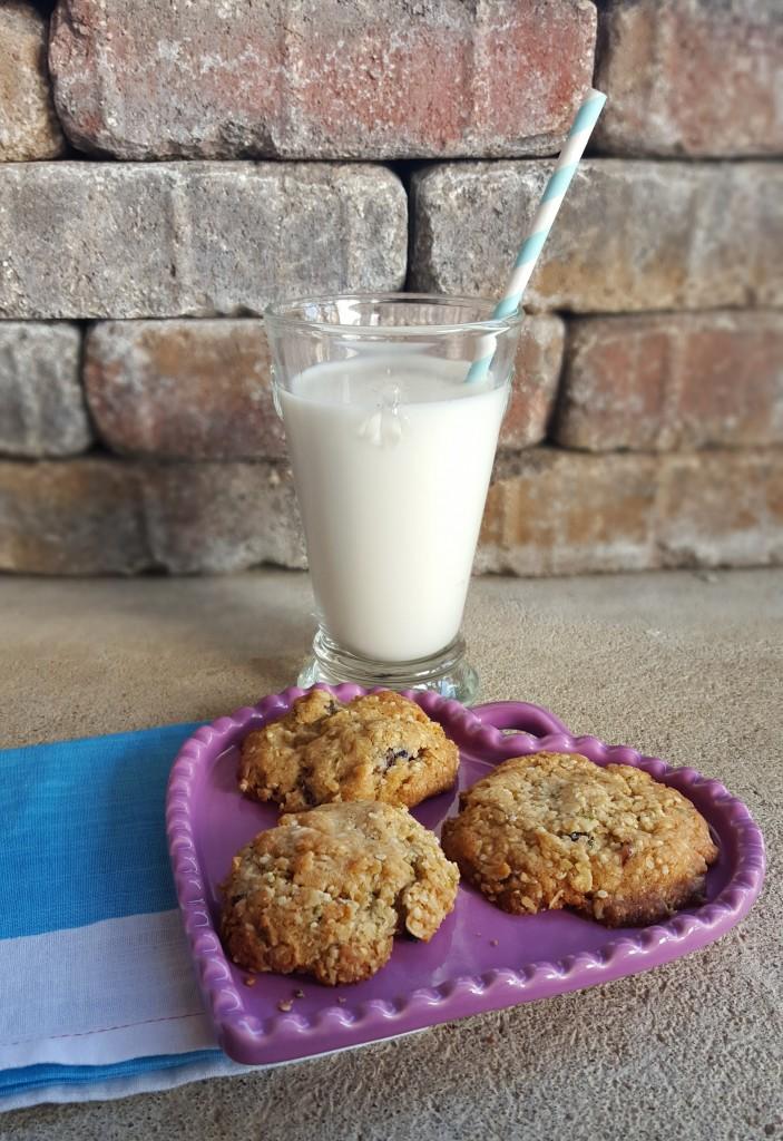 Orange-Hemp Cookies from Eliot's Eats